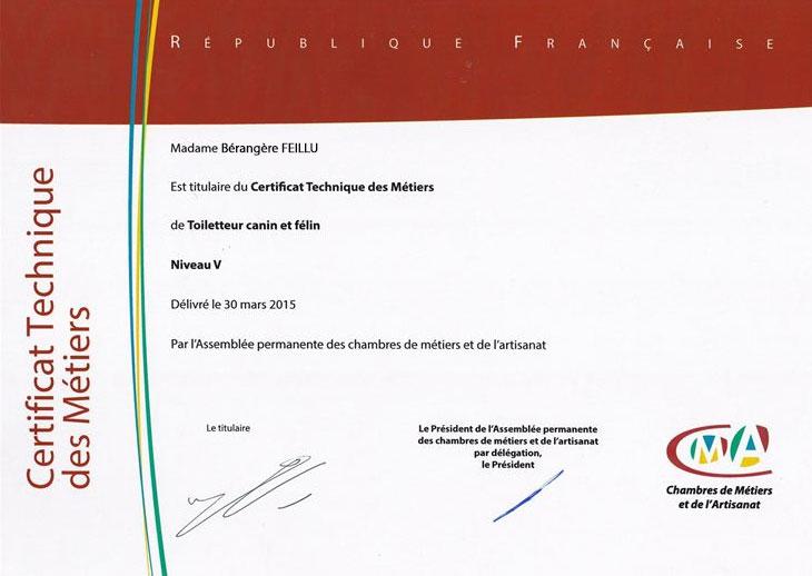 Certificat de réussite à l'examen du CTM