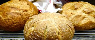 Les différences entre pain normal et de tradition