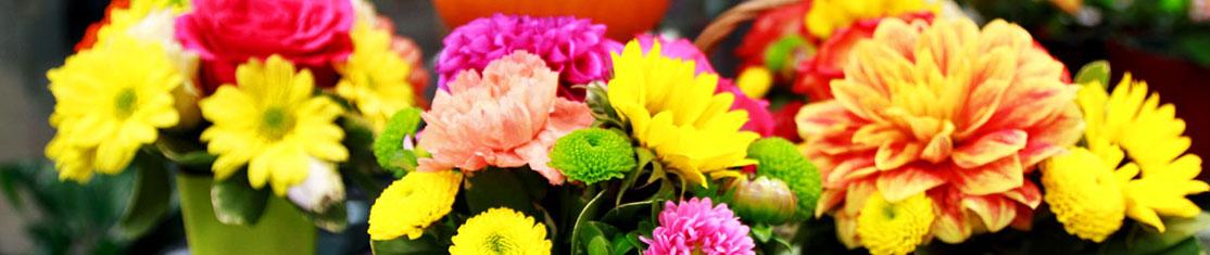 Compositions faites de roses de différentes couleurs
