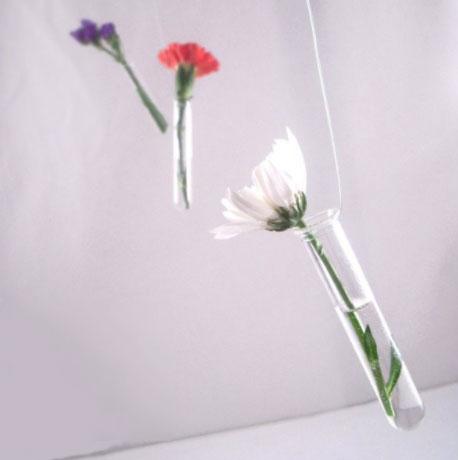 Tube à essai rempli de liquide avec une fleur