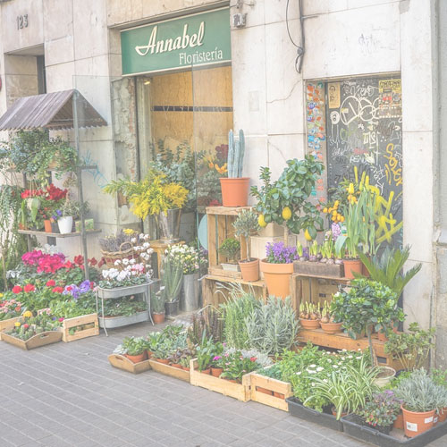 Changer de vie pour travailler dans une fleuristerie
