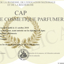 Document officiel du CAP
