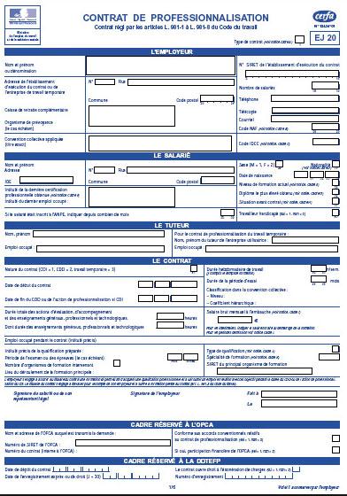 Exemple Cerfa 12434 Contrat Professionnalisation