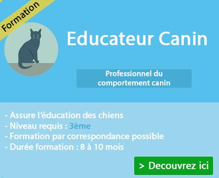 Apprendre à devenir un professionnel du comportement des animaux sur Replonges (Ain)