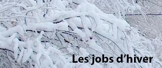 Les jobs d'hivers